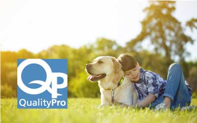 Learn about QualityPro certified pest control at Johnson Pest Control in Sevierville and Knoxville Tennessee