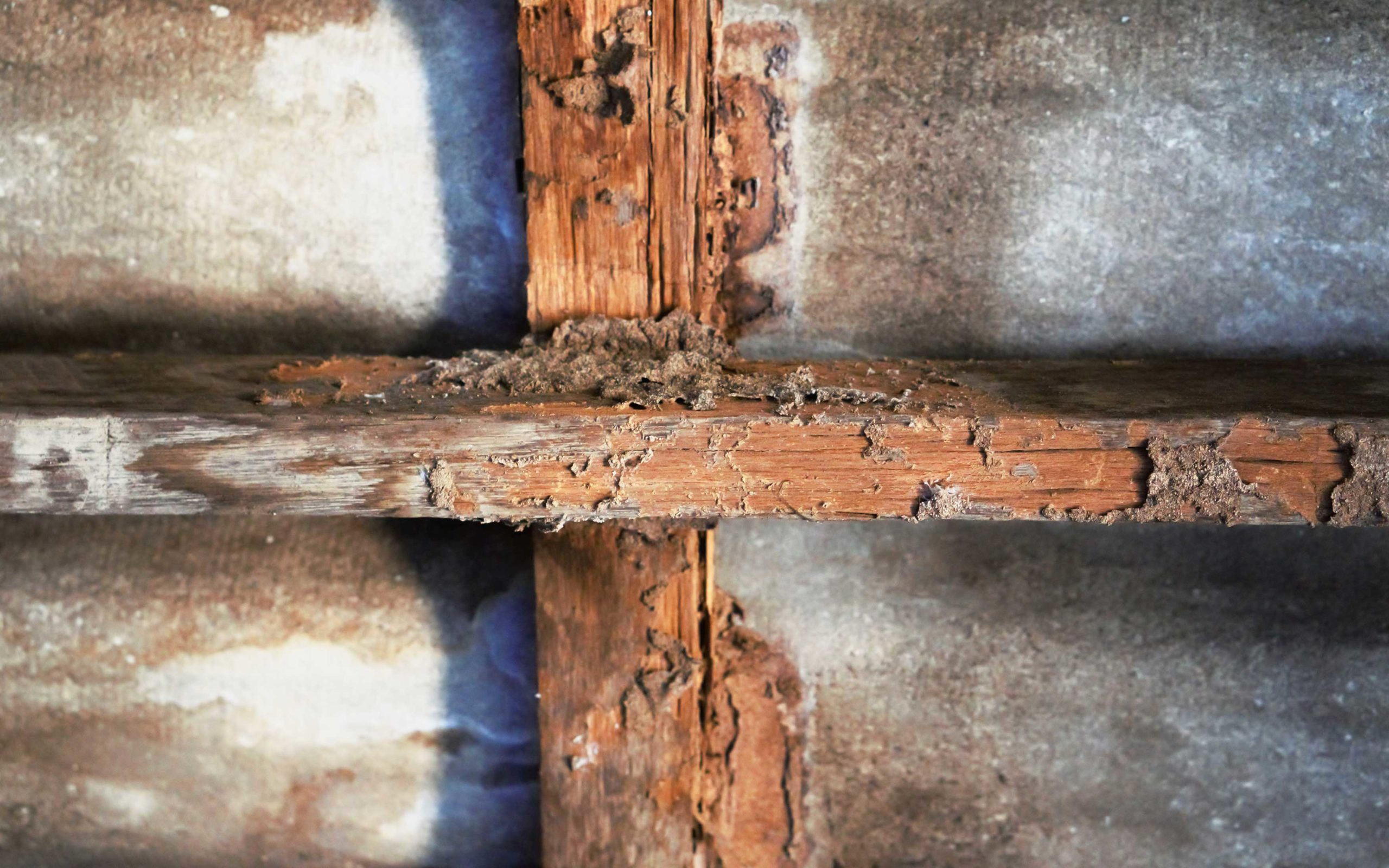 House with termite damage in Tennessee - Johnson Pest Control